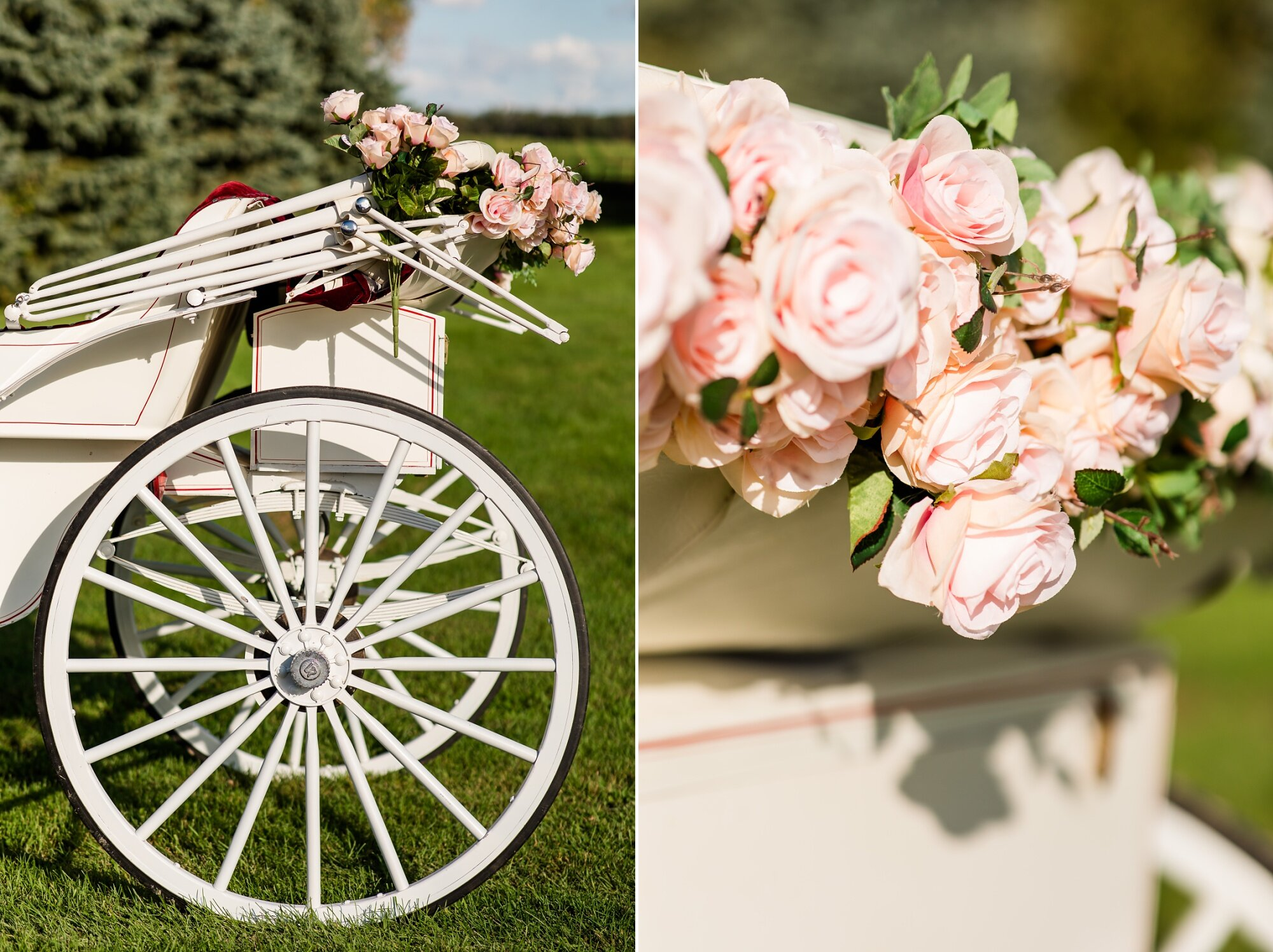 Amber Langerud Photography_Lake Park Minnesota, Outdoor Barn Wedding With Horses_6998.jpg