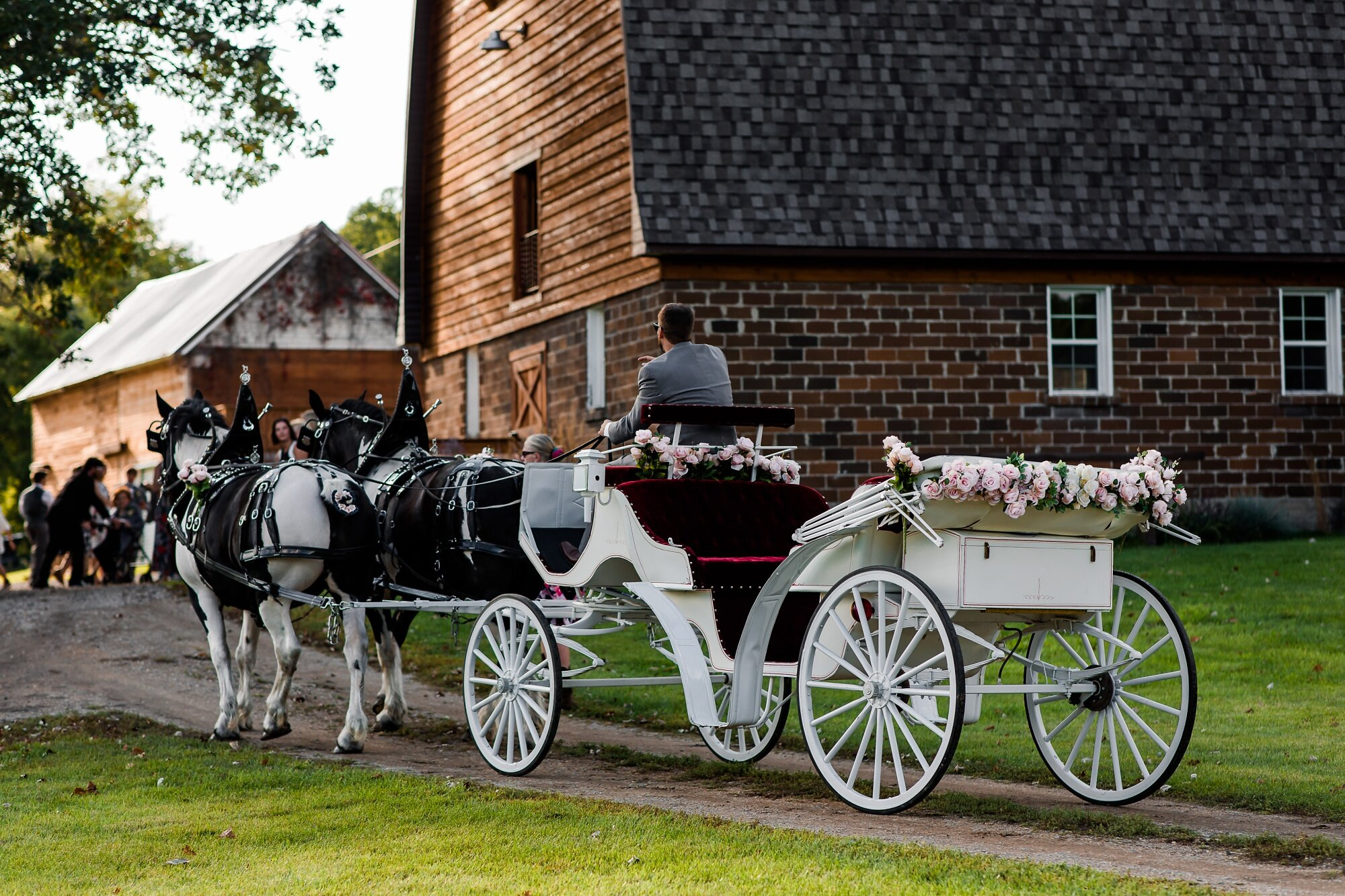 Amber Langerud Photography_Lake Park Minnesota, Outdoor Barn Wedding With Horses_7001.jpg
