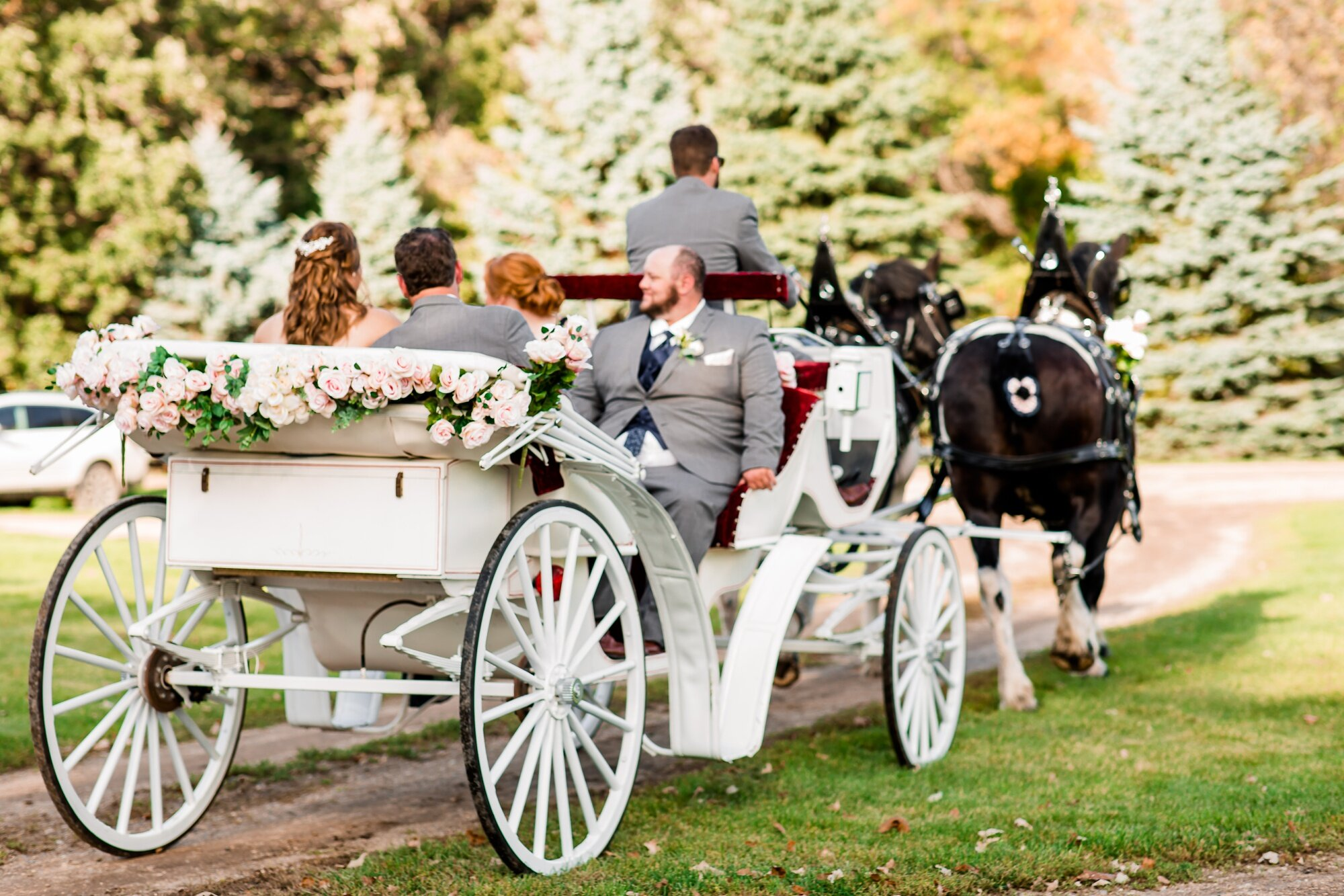 Amber Langerud Photography_Lake Park Minnesota, Outdoor Barn Wedding With Horses_7004.jpg