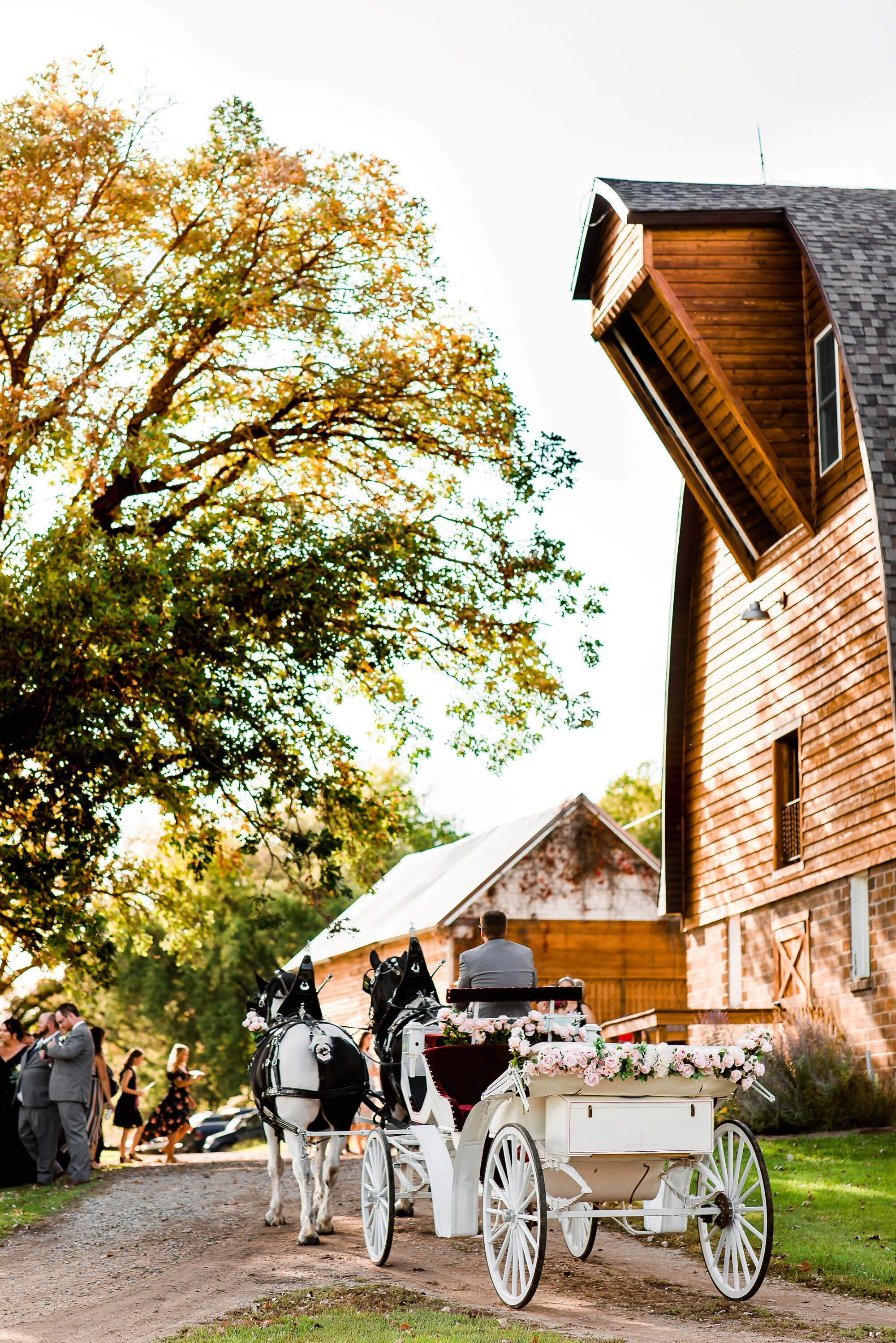 Amber Langerud Photography_Lake Park Minnesota, Outdoor Barn Wedding With Horses_7002.jpg