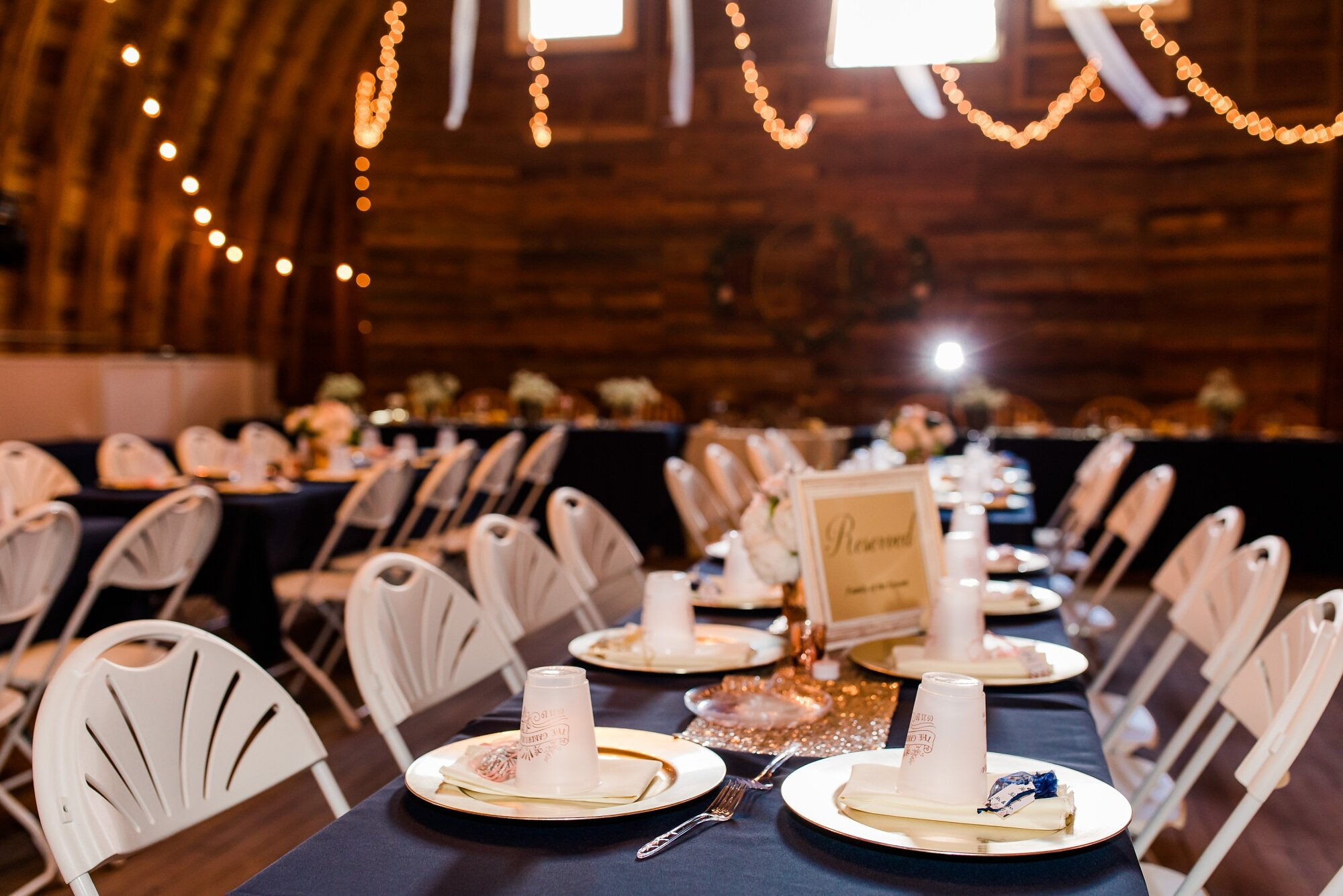Amber Langerud Photography_Lake Park Minnesota, Outdoor Barn Wedding With Horses_7011.jpg