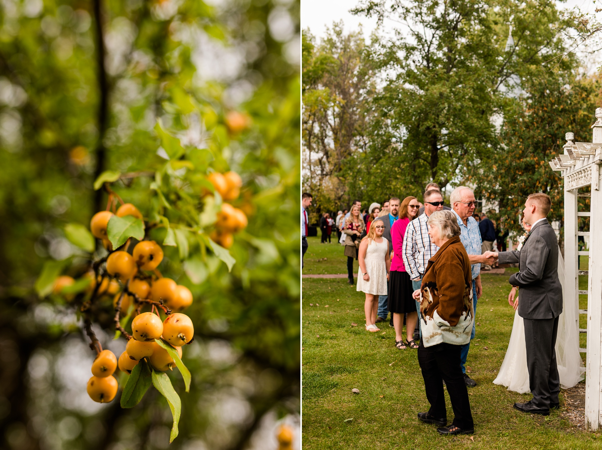 Amber Langerud Photography_Moohread, Outdoor, Barn Wedding at A Friends House_7113.jpg