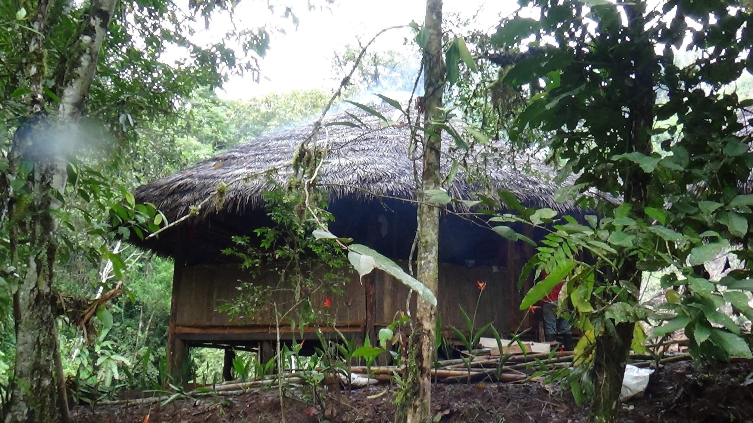 Chosa-ayahuascainecuador.com