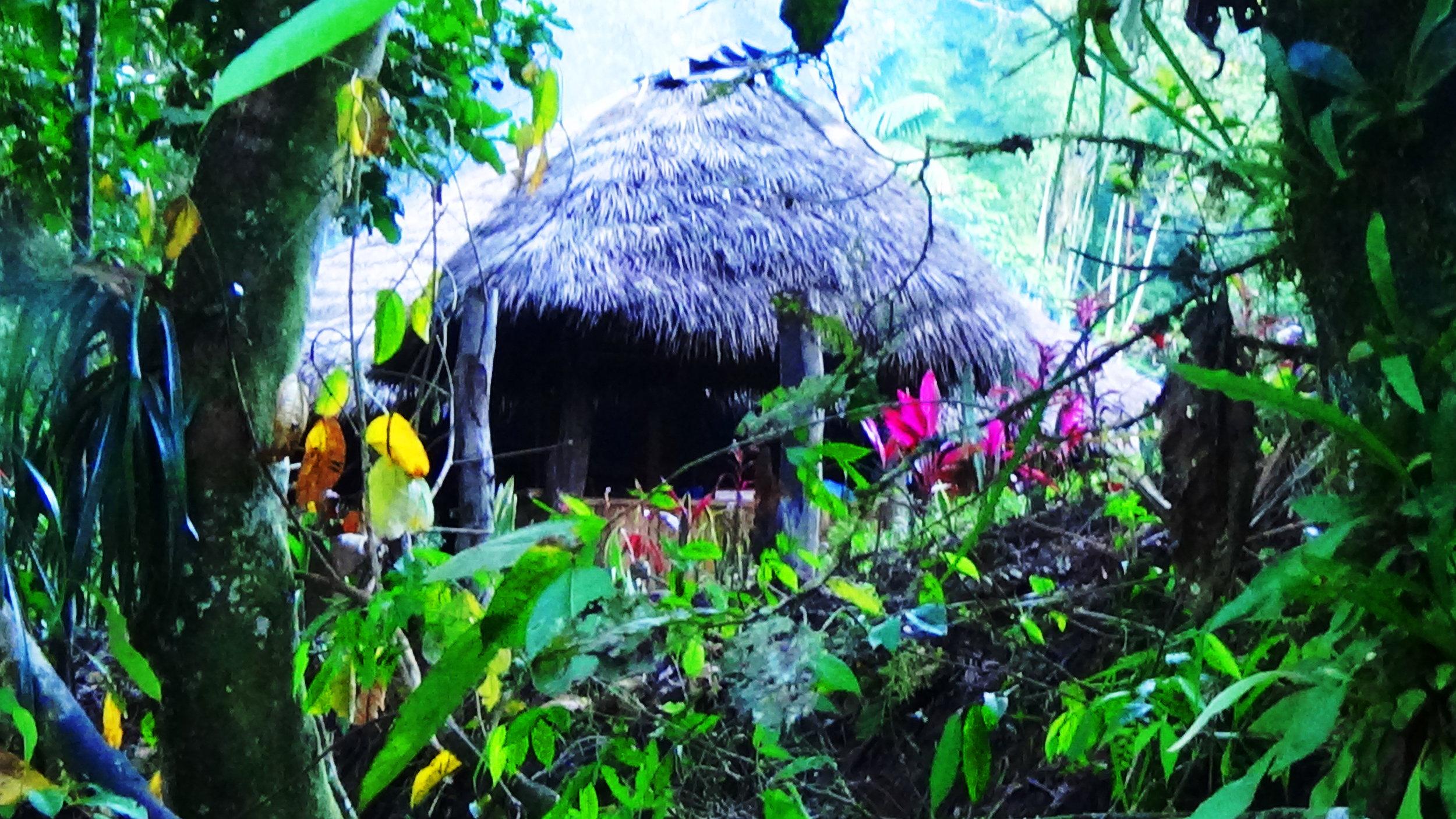 Sweat-lodge -Chosa-ayahuascainecuador.com