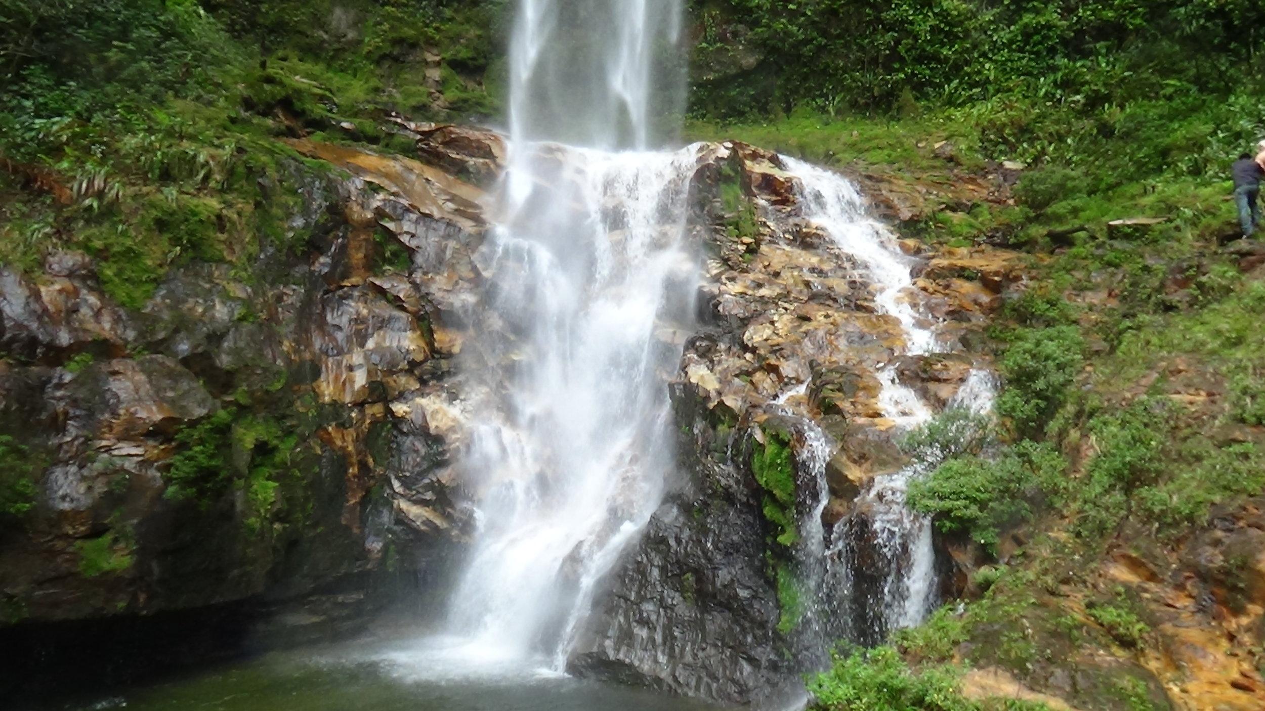 ayahuascainecuador-waterfall-rainforest