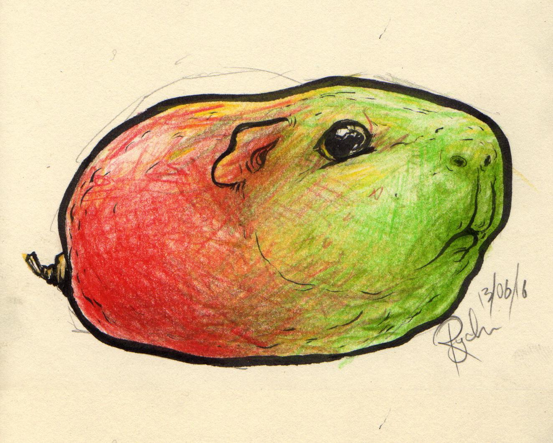 Mango Guinea Pig