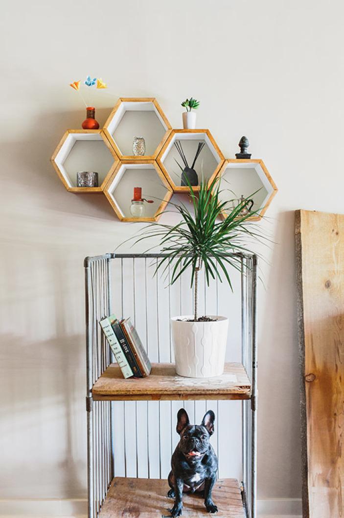 hex-shelves-milo.jpeg
