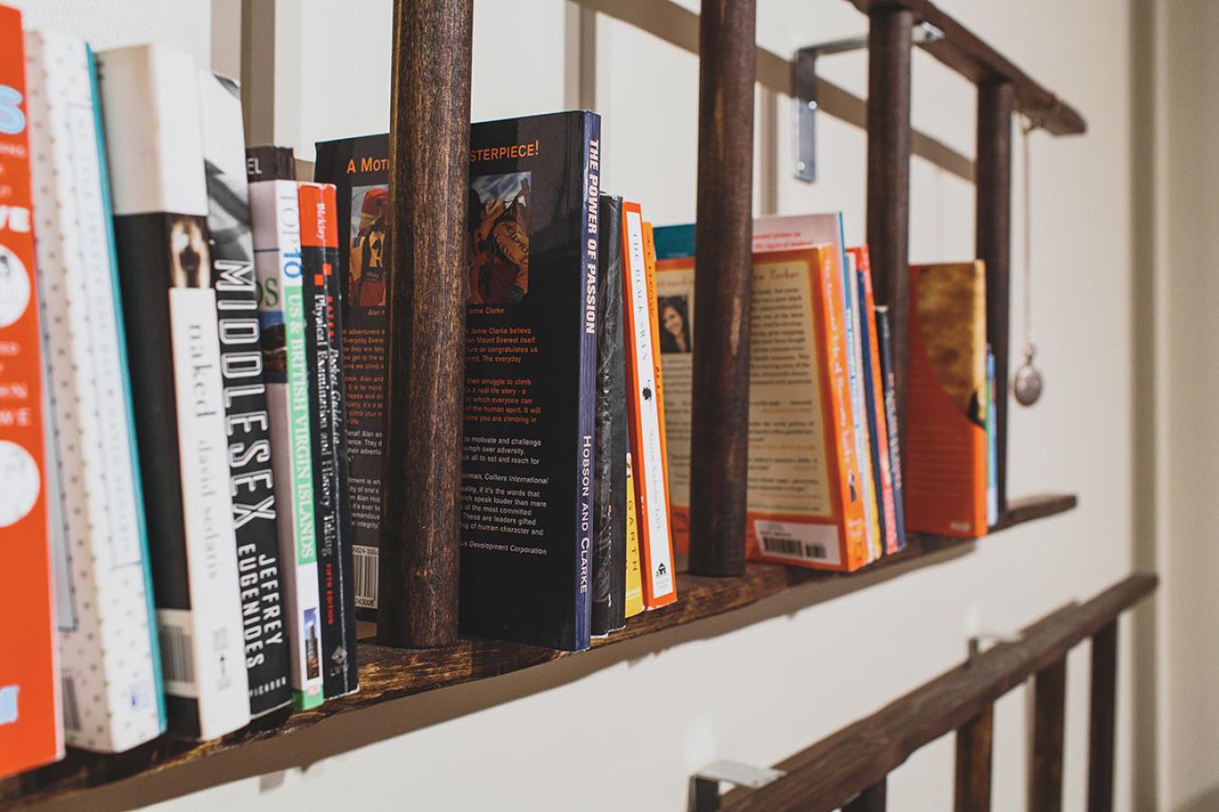 ladder-bookcase.jpeg