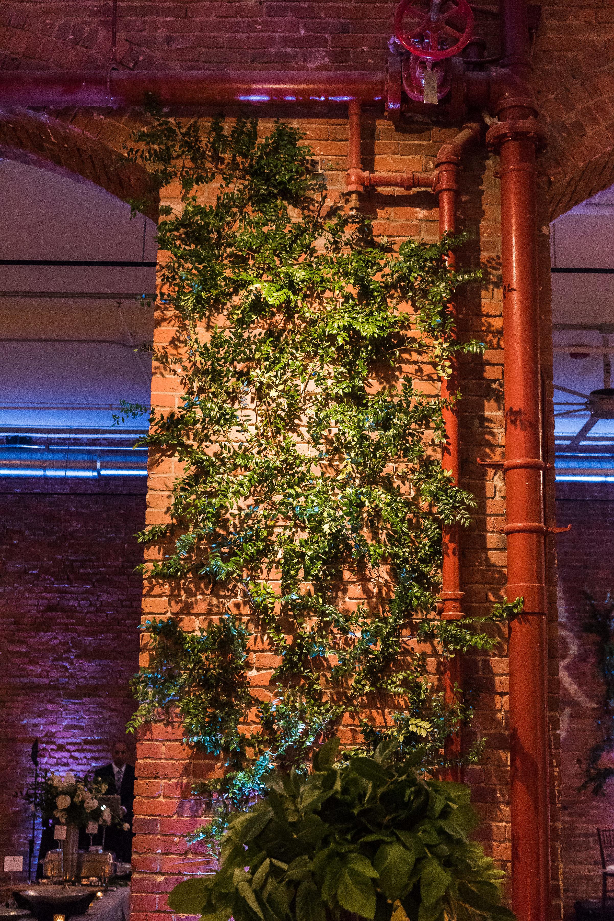 Greenery climbing up wall wedding.jpg