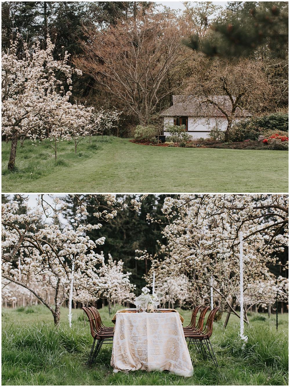Nashi Orchards Japanese Styled Wedding Shoot — Seattle
