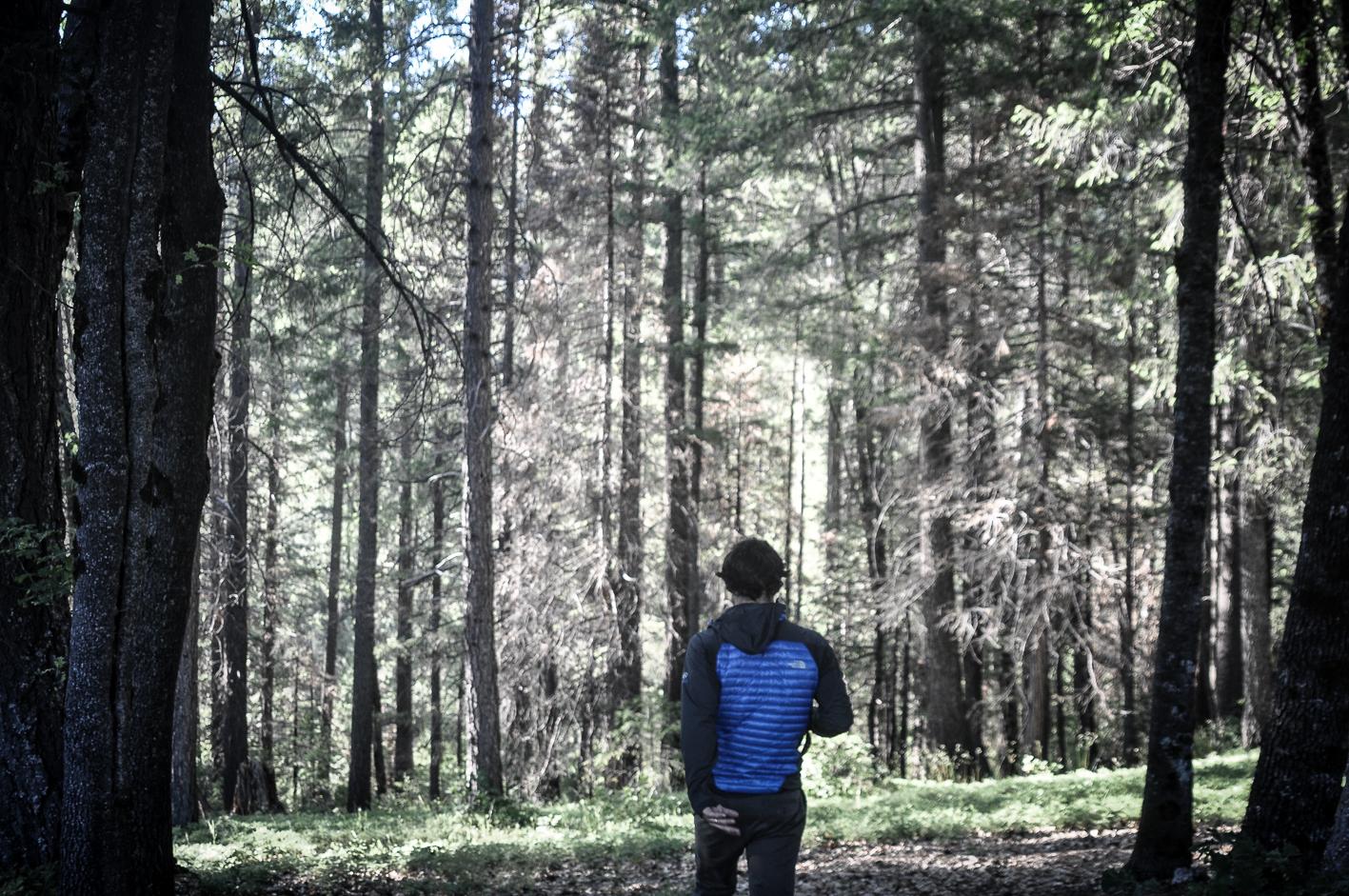 Juliano entrando nas florestas do Yosemite pela primeira vez.