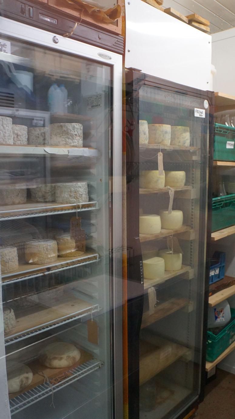 Cheese fridge.