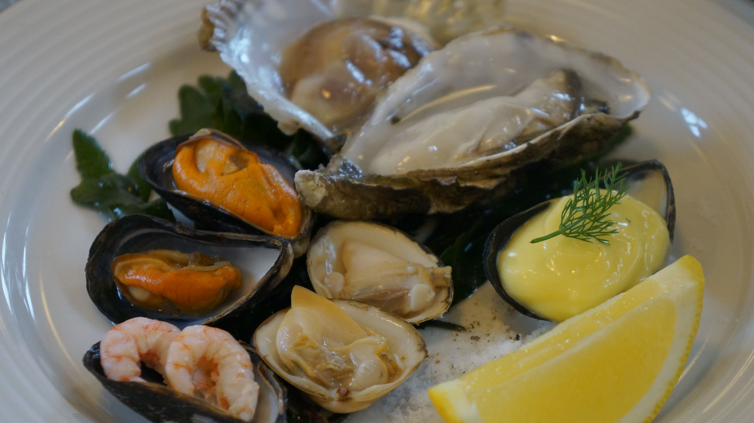 My seafood platter: Home Made Mayo, Oysters, Shrimp, Clams & Mussels