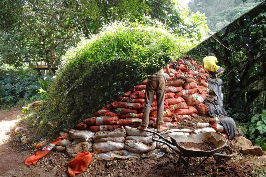 teto verde no base de sacos de terra