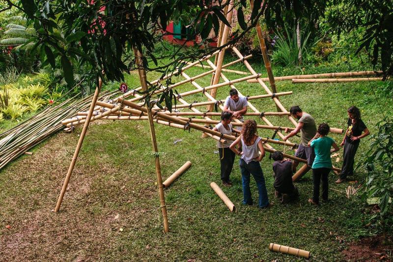 bambu15.jpg