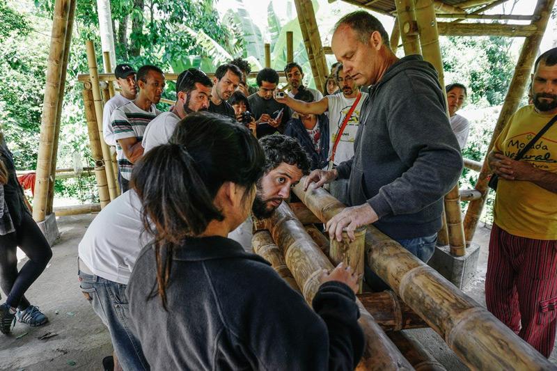 bambu17.jpg
