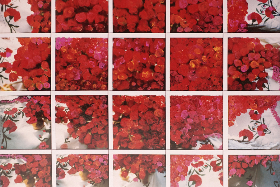 rose_compositionshots6.jpg