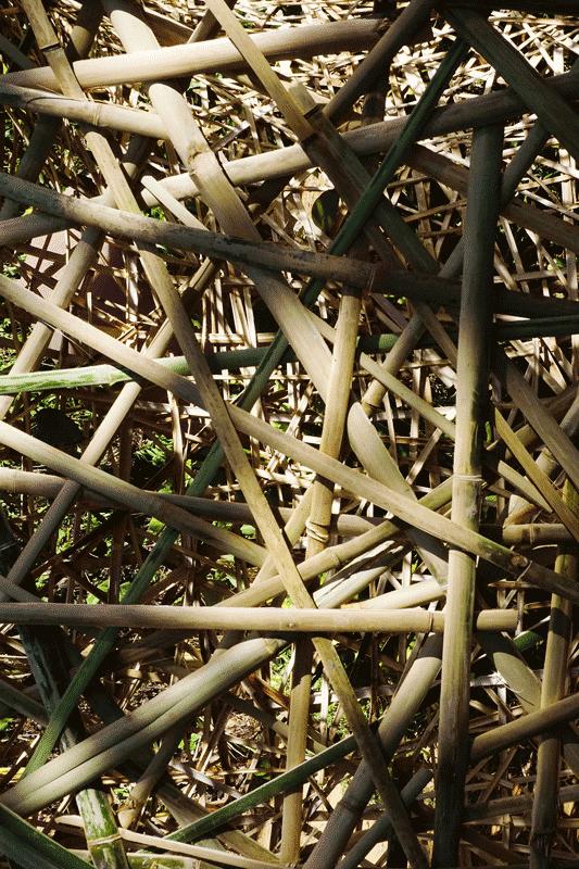 rede de bambu entrelaçado