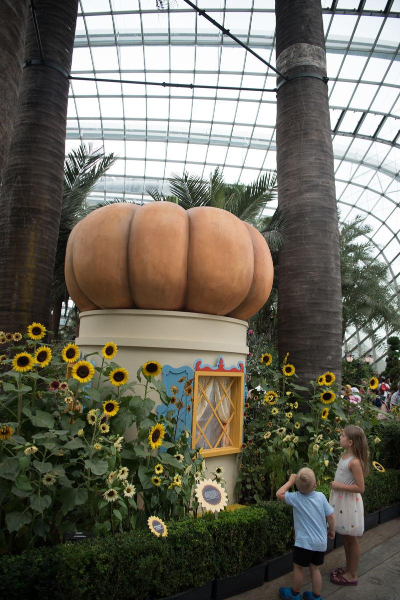 flower dome-14.jpg