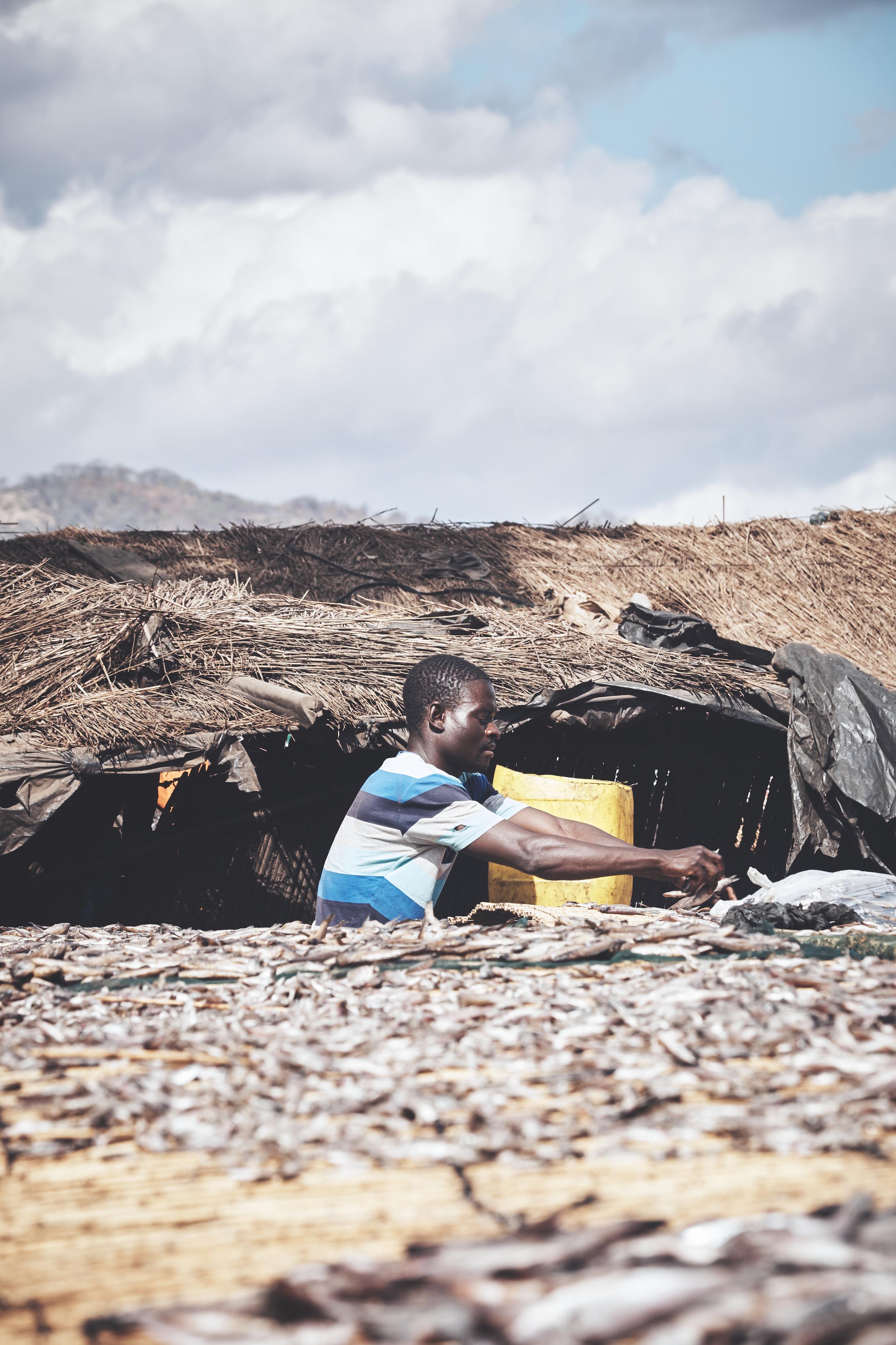 Etiopien juni 2016  03348 portf.jpg