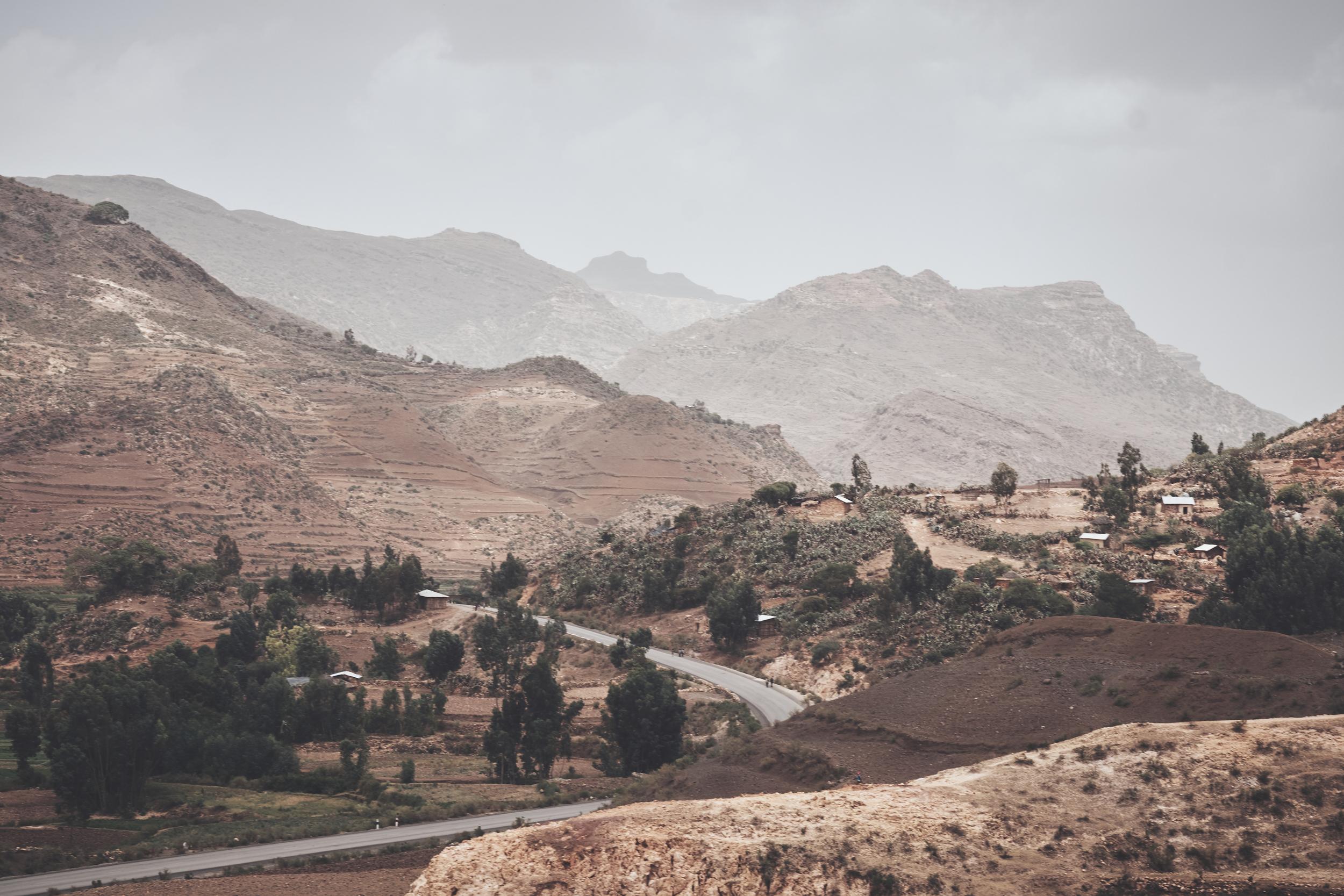 Etiopien juni 2016  01107 portf.jpg