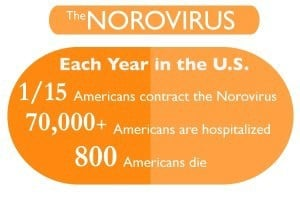 how long does norovirus contagious