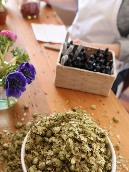 Advanced Herbal Course - The Advanced Herbal Course has been designed to prepare students working toward a career as professional herbal practitioners.