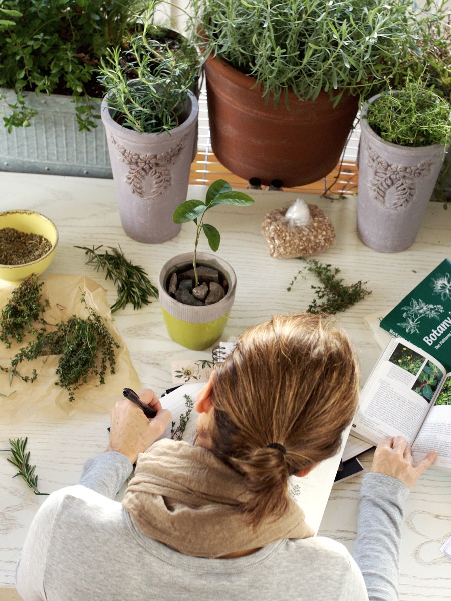 Herbal Materia Medica Course - Get ready to inspire and deepen your herbal knowledge! For beginners and advanced herbalists alike, the Herbal Materia Medica Course is here to help you create (or add to) your own materia medica.