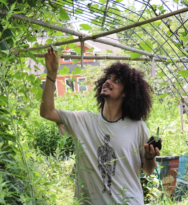 Brandon Ruiz is a Holistic Herbalist, Permaculture Designer and Plant-Based Nutritionist who lives in Charlotte, NC. He specializes in studying and working with plant medicines from his native Puerto Rico and surrounding islands, and the Appalachian region; this Appalachia + Island fusion is showcased through his company,   Atabey Choreto Medicinals  . He also is the Director and Founder of the   Charlotte Herbal Accessibility Project  , a project in Charlotte that aims to provide equal and affordable access to herbal medicine in its entirety, from seed to tincture.