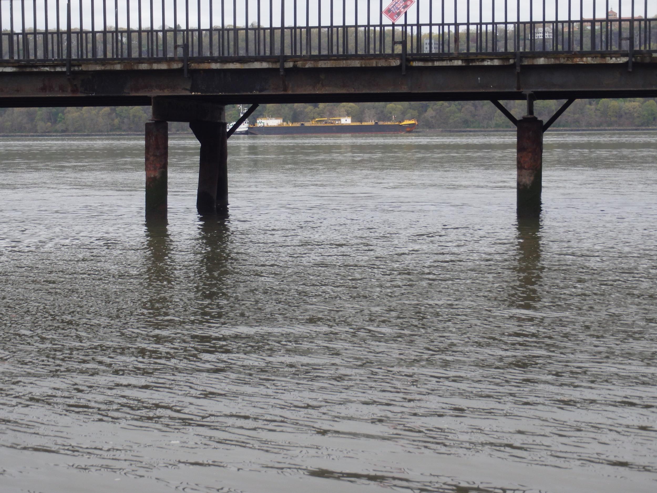 Peering under the pier...