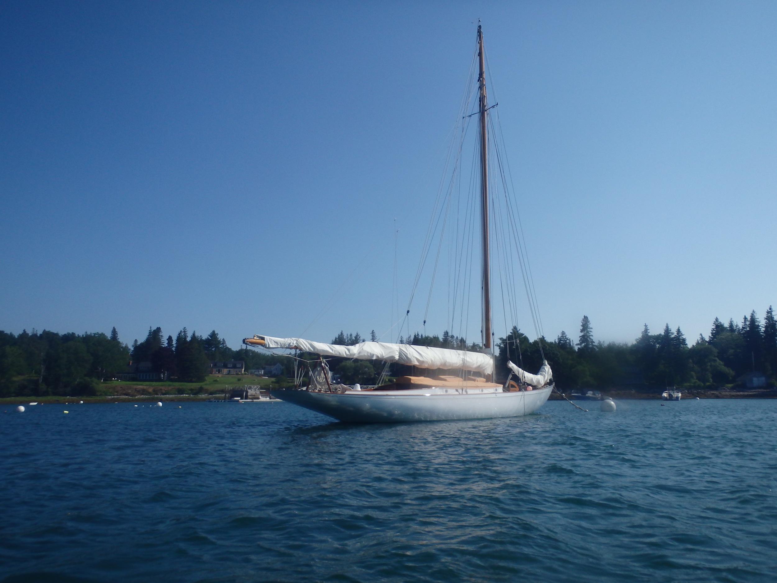 Sloop in Tenants Harbor