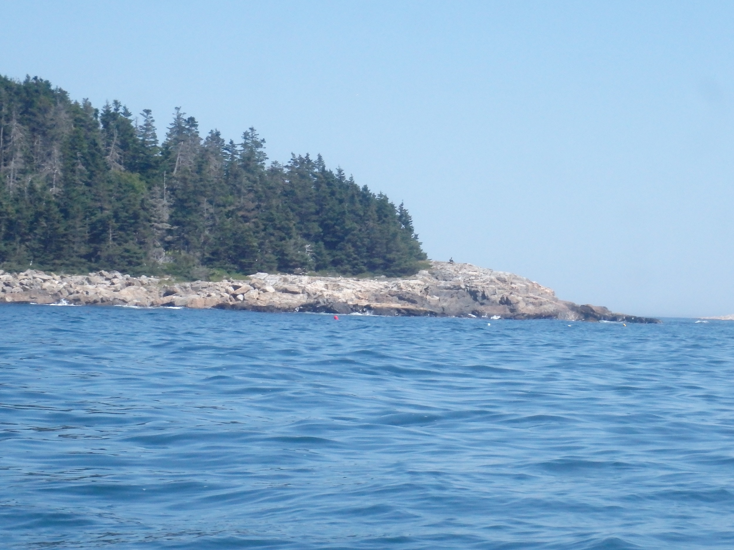 Southern tip of Matinicus Island