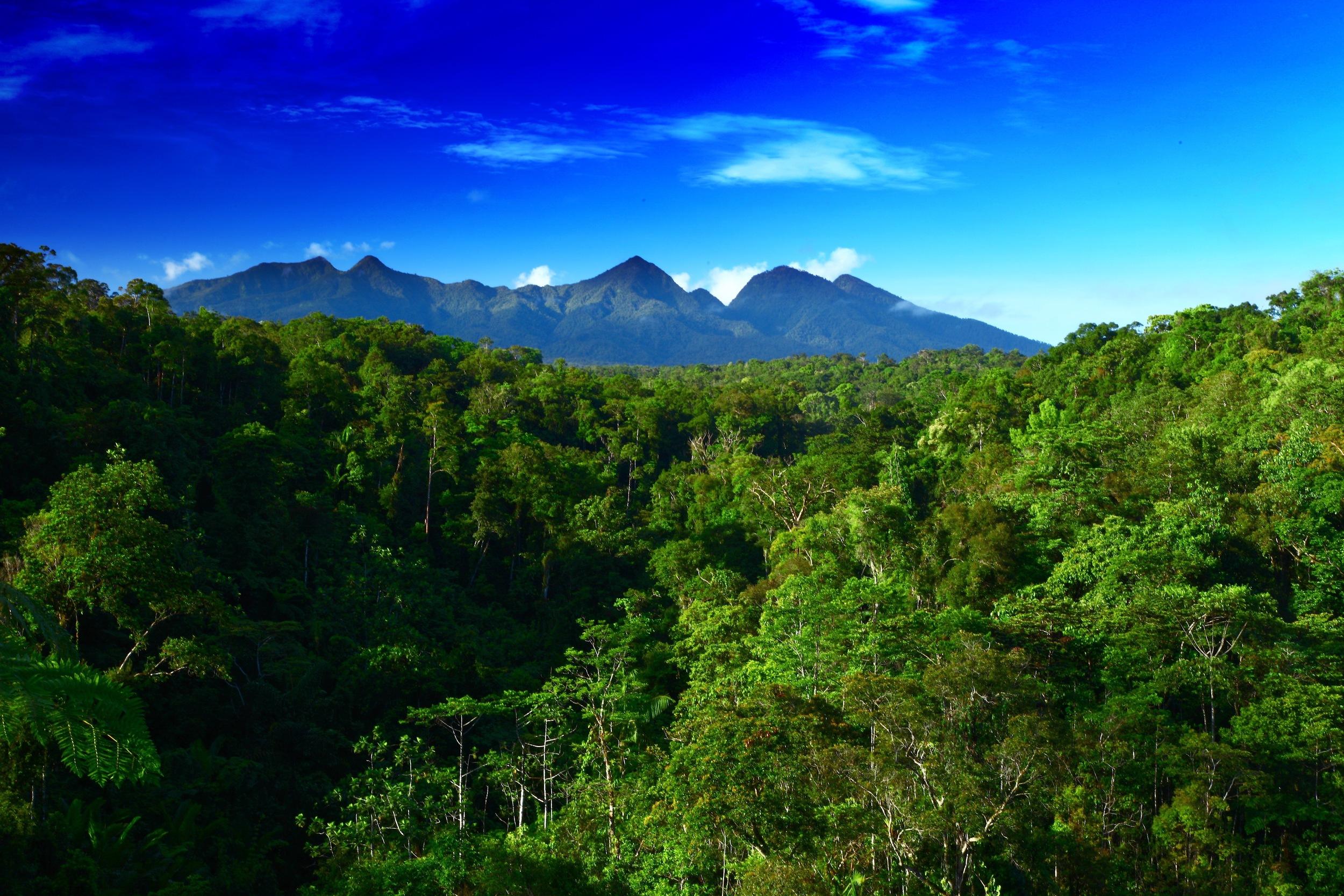 Mount Bosavi Papua New Guinea
