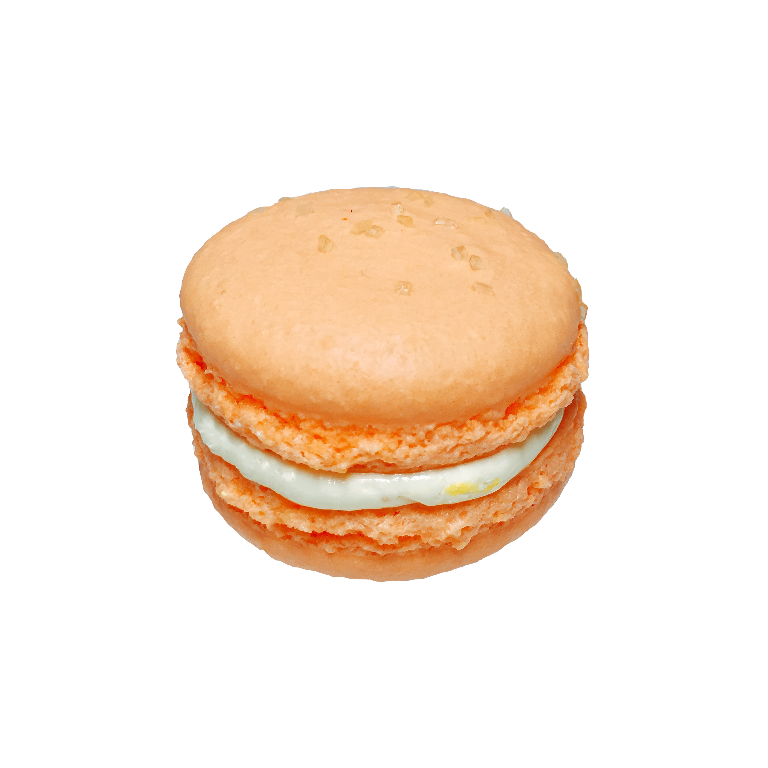 ginger-chantilly.png