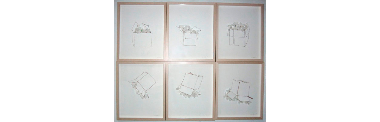 "Flowers in the Box , Mat board ,ink, copper wire and flowers made of plastic from milk jugs, 18"" x 15"" each panel, 36"" x 45"" all"