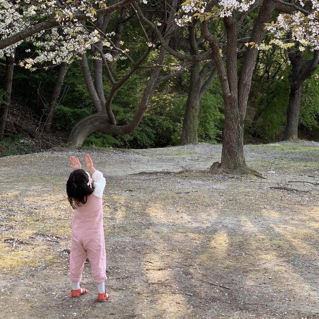 Screen Shot 2019-04-26 at 11.24.55.png
