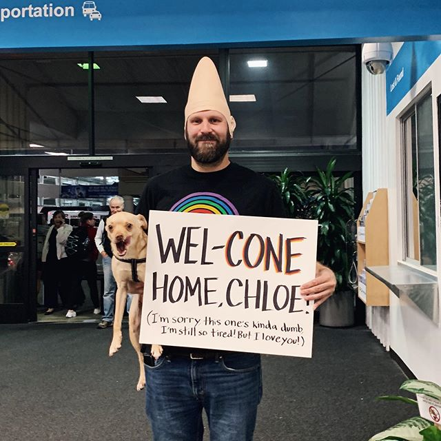It looks like my favorite gnome forgot his hat on his way to pick me up at the airport. What a perfect sleepy crew to come cone to!!❤️#crapairportsigns