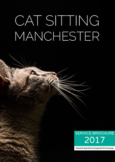 Download our new service brochure by visiting our dedicated cat sitting website: - www.catsittingmanchester.co.uk