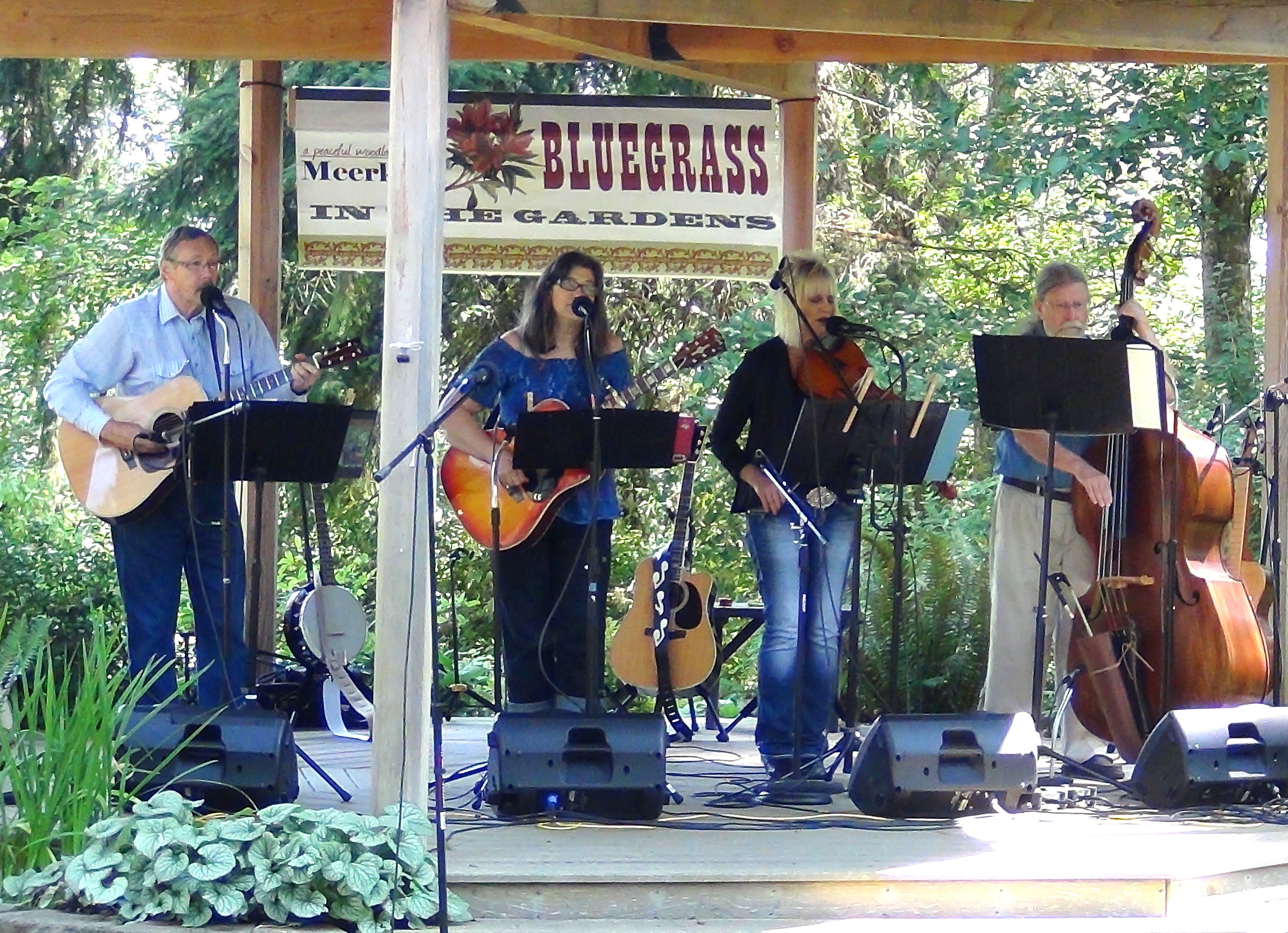 Meerkerk Bluegrass in the Gardens 2014