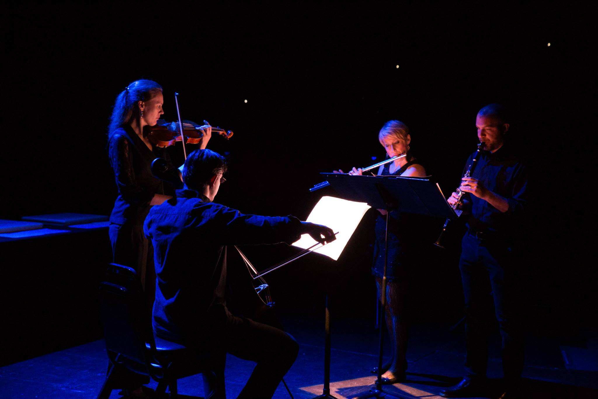 Pittsburgh New Music Ensemble's world premiere of Amy Williams' Ligamy @ City Theatre in Pittsburgh (2015)