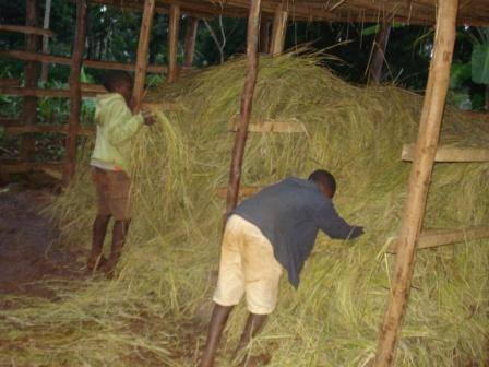 Peter and Joseph were excited to help fill the shed with hay.
