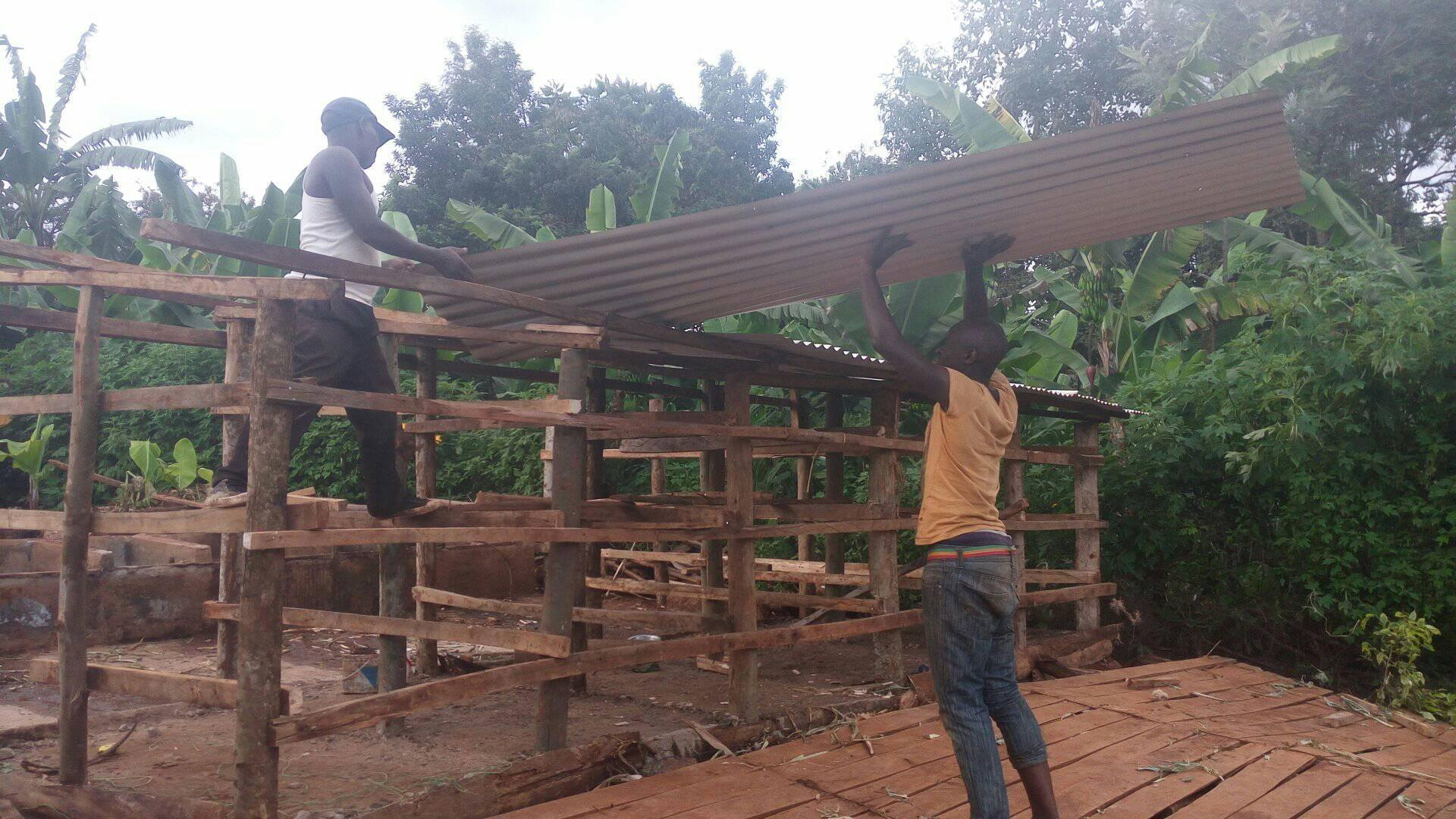 We built the shed back stronger.