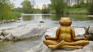 GuidedMed-frog meditating.jpeg