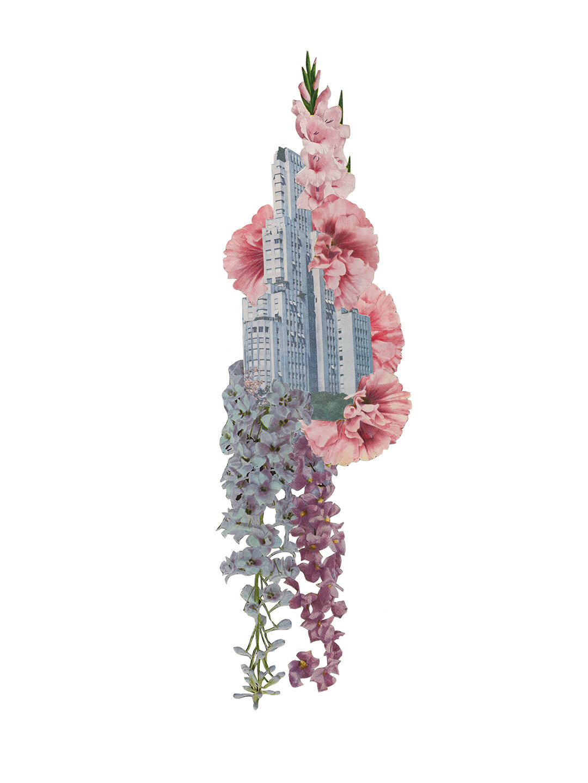 building_floral_edit_001.jpg