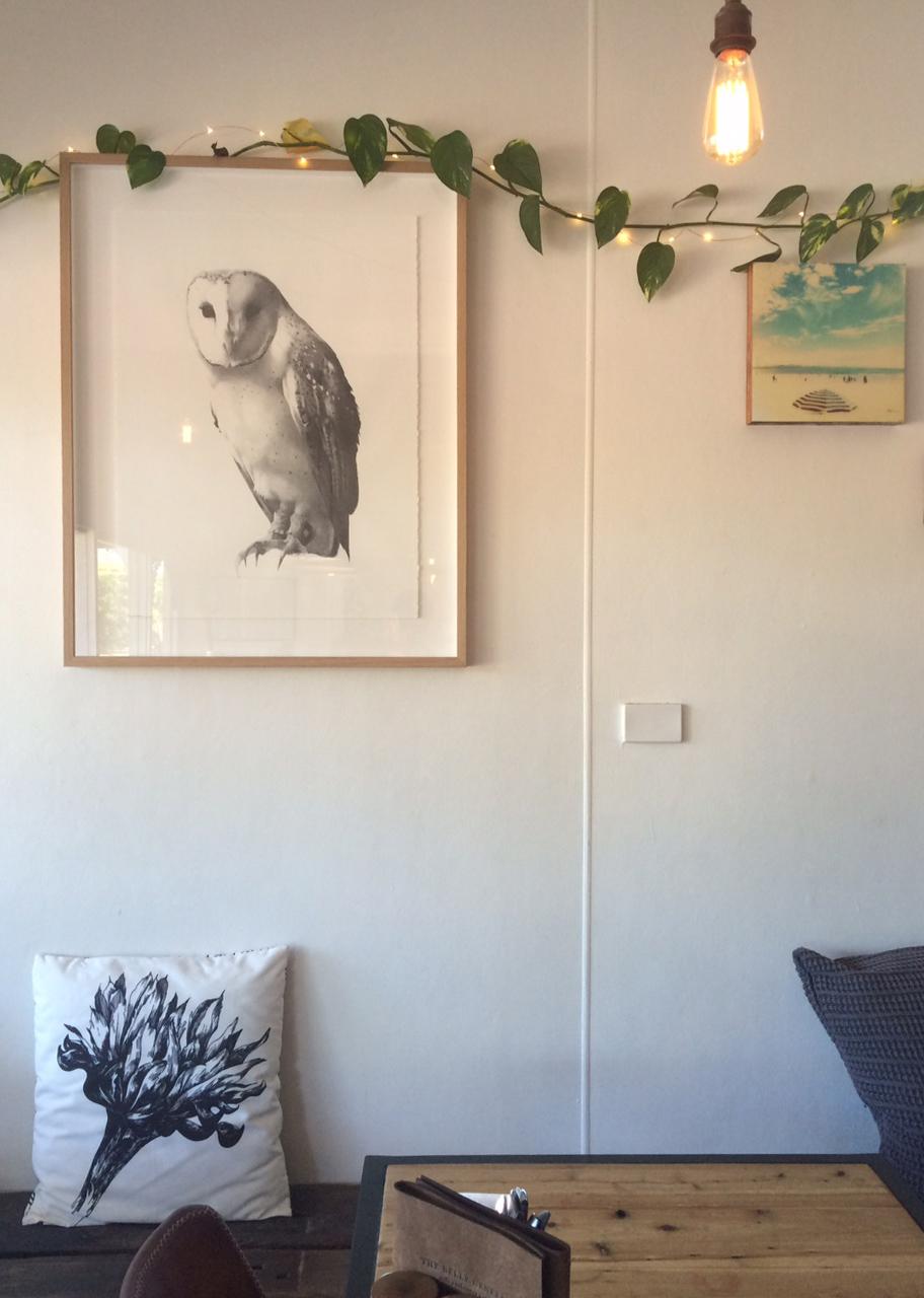 Owl#2-Belle-Genral.jpg