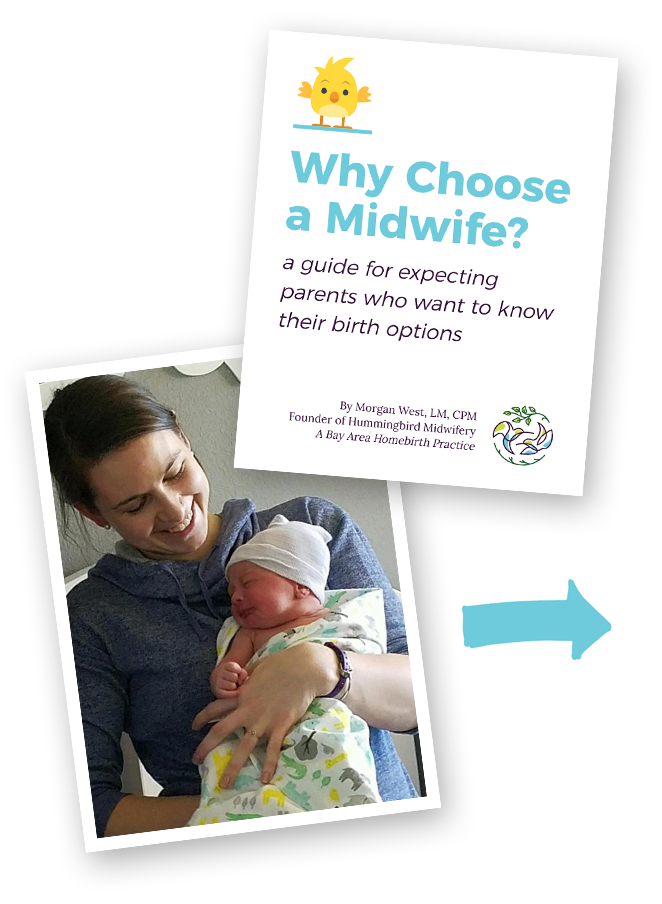 Hummingbird-Midwifery-Newsletter-Opt-In-Image.png