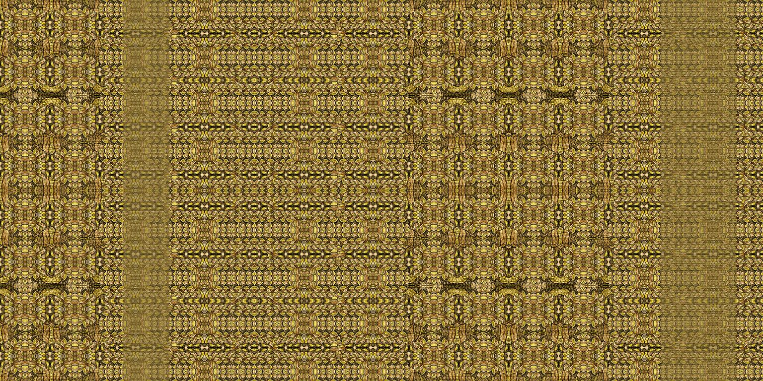 donenm013_60x120.jpg