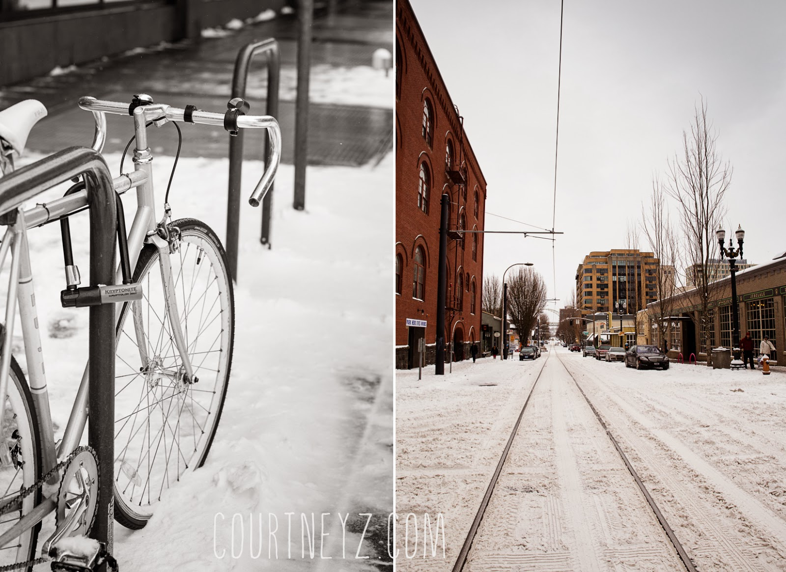 Courtney Z Photography downtown Portland