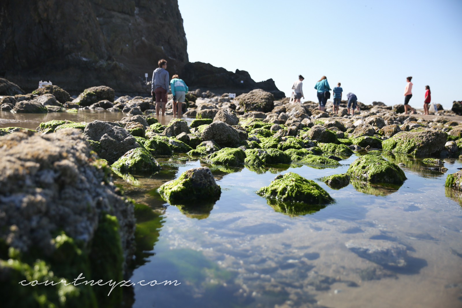 Travel Oregon, Cannon Beach