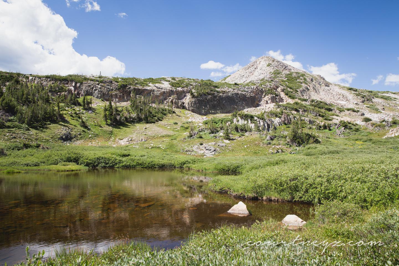 15.07.29_Wyoming_MB_web-3.jpg